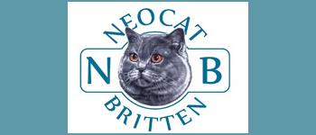 banner_neocat